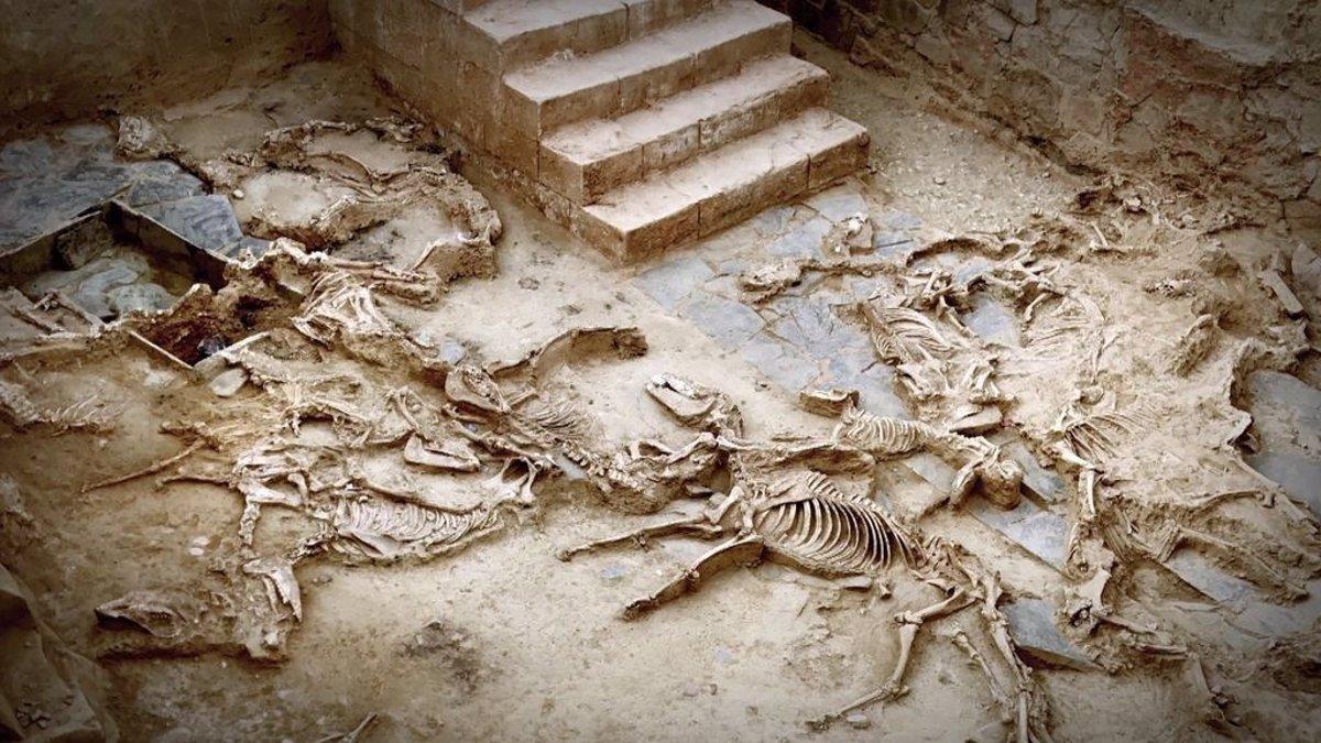 El conjunto arqueológico de 'Casas del Turuñuelo' en Guareña es declarado Bien de Interés Cultural - Descubrir