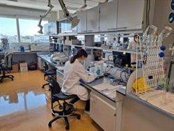 Cataluña participa en un proyecto europeo para desarrollar fármacos basados en nanotecnología