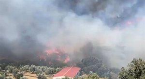 Amplían con medios técnicos y personales el dispositivo contra el incendio en un paraje de Yunquera (Málaga)