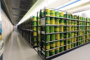 La Filmoteca Española adquiere un nuevo sistema para gestionar sus fondos de 40.000 títulos