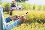 El Gobierno saca a consulta un plan para conectar zonas con poca cobertura móvil, dotado de 150 millones