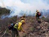 El Gobierno refuerza la dotación de medios para luchar contra los incendios forestales