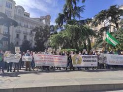 Coordinadora Recuperando pide en el Congreso declarar la nulidad de las inmatriculaciones de la Iglesia en 6 meses