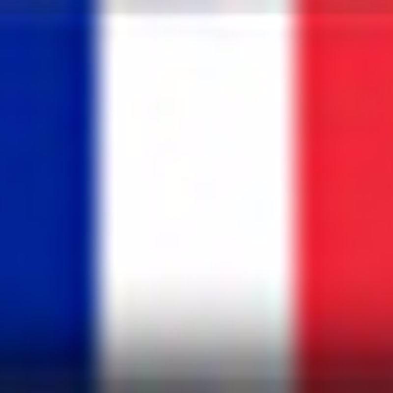 Bandera FRA
