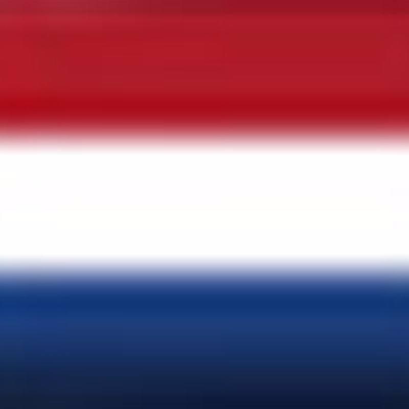 Bandera NLD