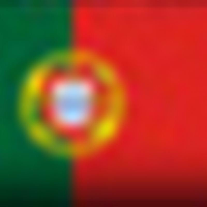 Bandera PRT